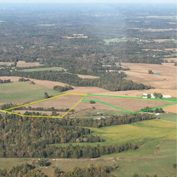 Absolute Land Auction Margaret Davis Estate